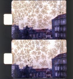 telecinema_film_con_muffa